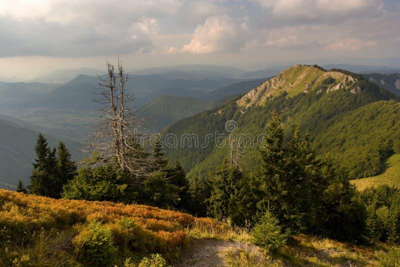 горы ландшафта стоковая фотография rf