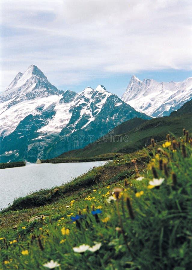 Download горы озера стоковое фото. изображение насчитывающей швейцария - 81468