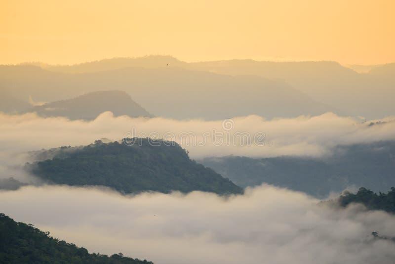 Горы пелены тумана стоковые изображения