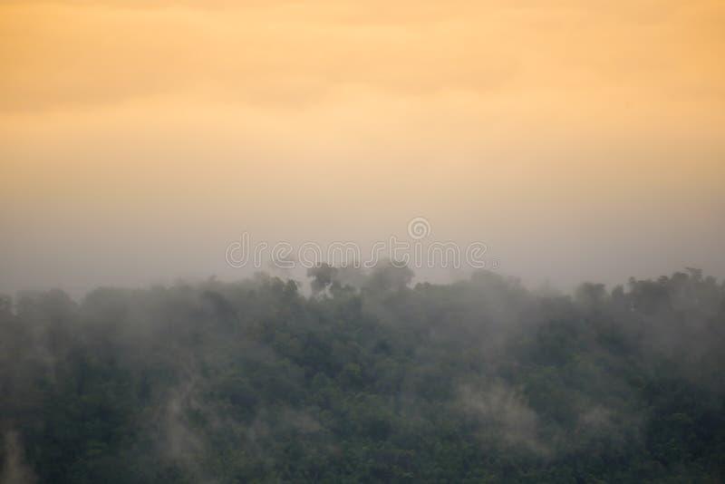 Горы пелены тумана стоковое фото rf