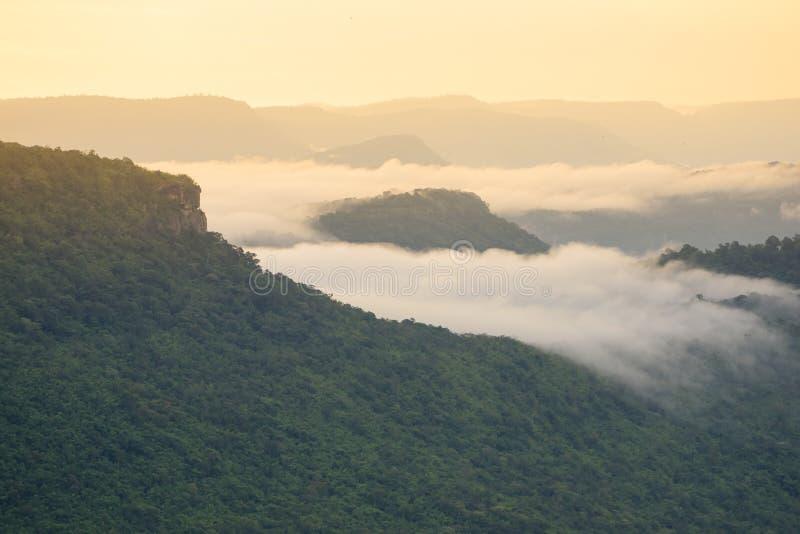Горы пелены тумана стоковая фотография rf