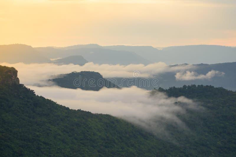 Горы пелены тумана стоковые изображения rf
