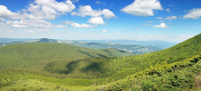 Download Горы покрыли деревья стоковое фото. изображение насчитывающей пуща - 37931844