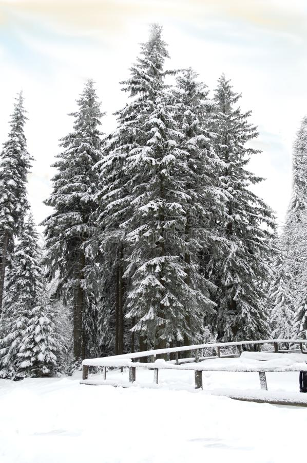 горы полируют зиму валов снежка стоковое фото