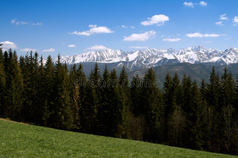 горы Польша tatry стоковые изображения
