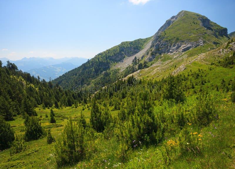 Горы посетителя стоковое изображение rf