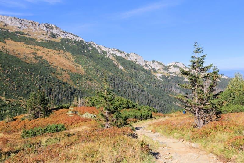 горы Польша tatry стоковое изображение rf