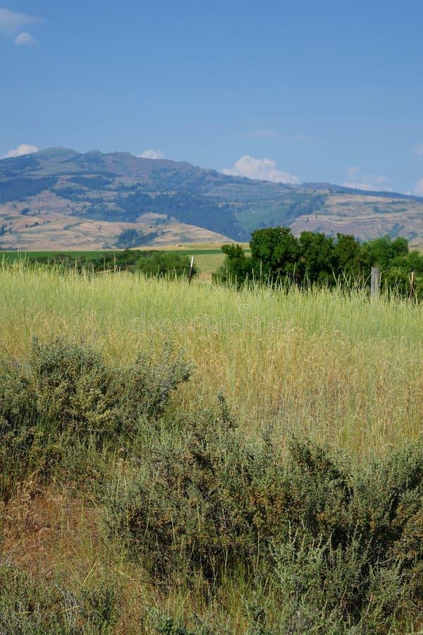 Горы приближают к мезе, Айдахо стоковые изображения rf