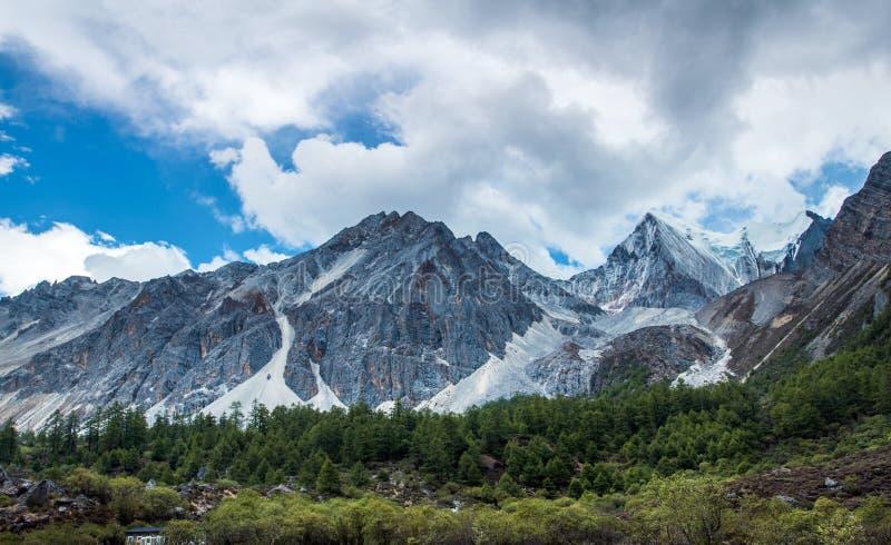 Горы плато покрытые снегом стоковые фото