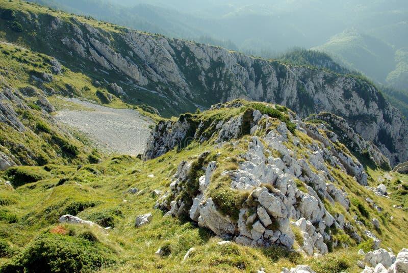 горы румынские стоковые изображения