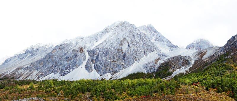 Горы снежка стоковая фотография rf