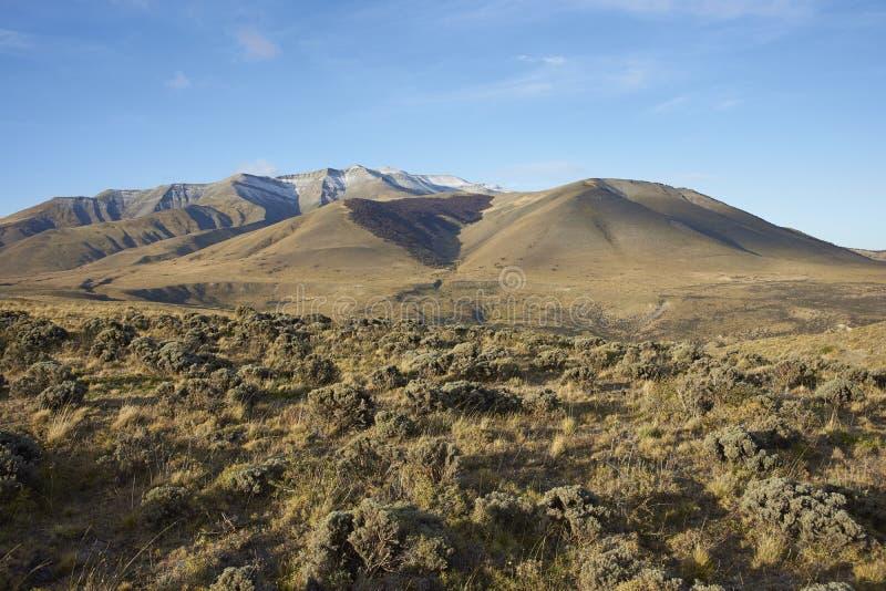 Горы Сьерры Contreras, национальный парк Torres del Paine, Чили стоковые фото