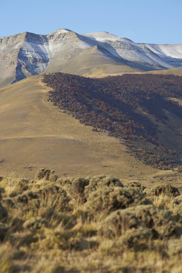 Горы Сьерры Contreras, национальный парк Torres del Paine, Чили стоковые фотографии rf