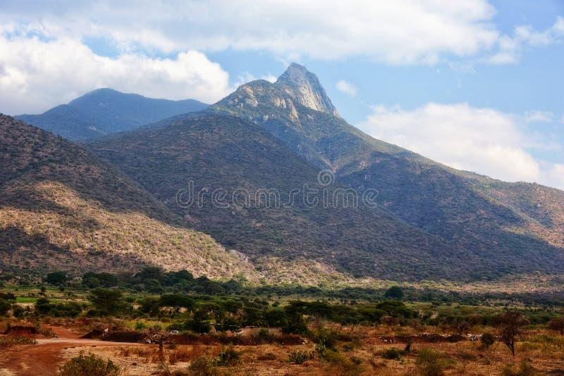 Горы Танзании стоковая фотография