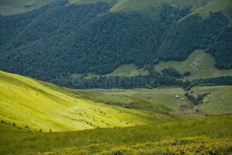 горы украинские стоковые фото