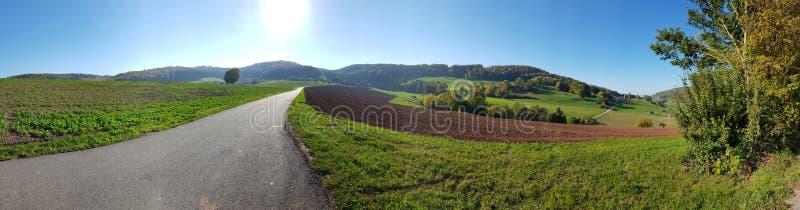 Горы швейцарца панорамы стоковая фотография rf