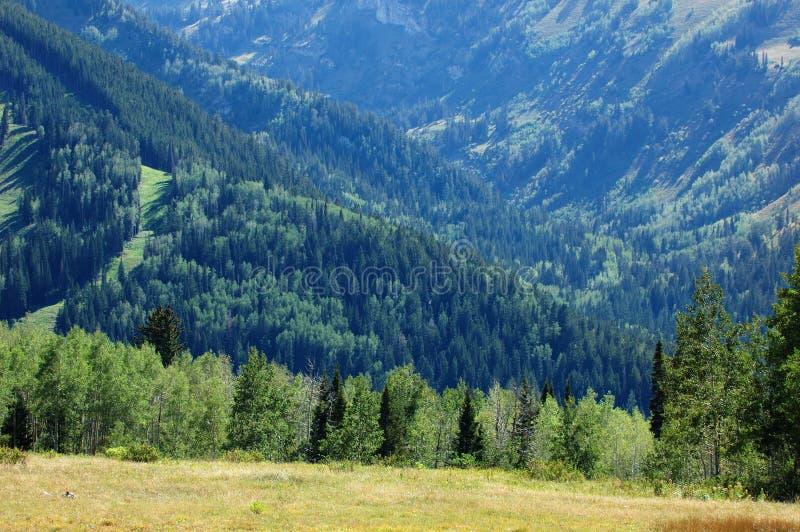 горы Юта стоковые изображения rf