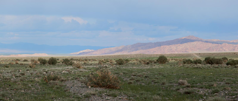 Горы Altai. Красивейший ландшафт гористой местности стоковое фото