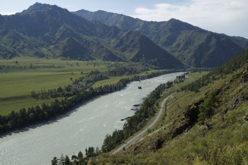Горы Altai, река Katun стоковая фотография