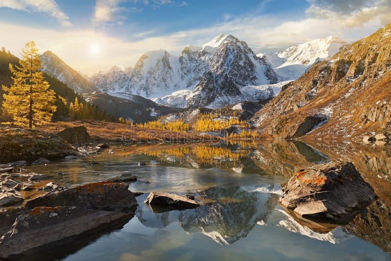 Горы Altai, Россия, Сибирь стоковая фотография