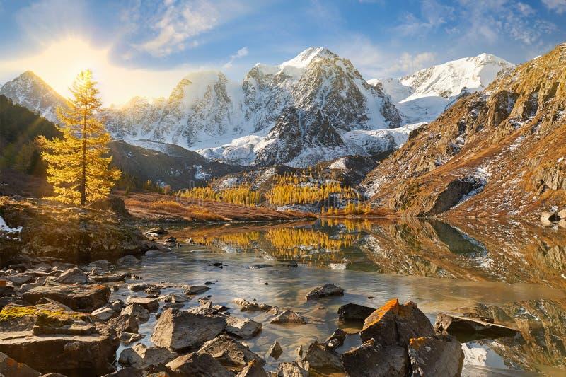 Горы Altai, Россия, Сибирь стоковые фото