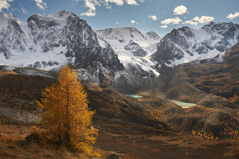 Горы Altai, Россия, Сибирь стоковое фото