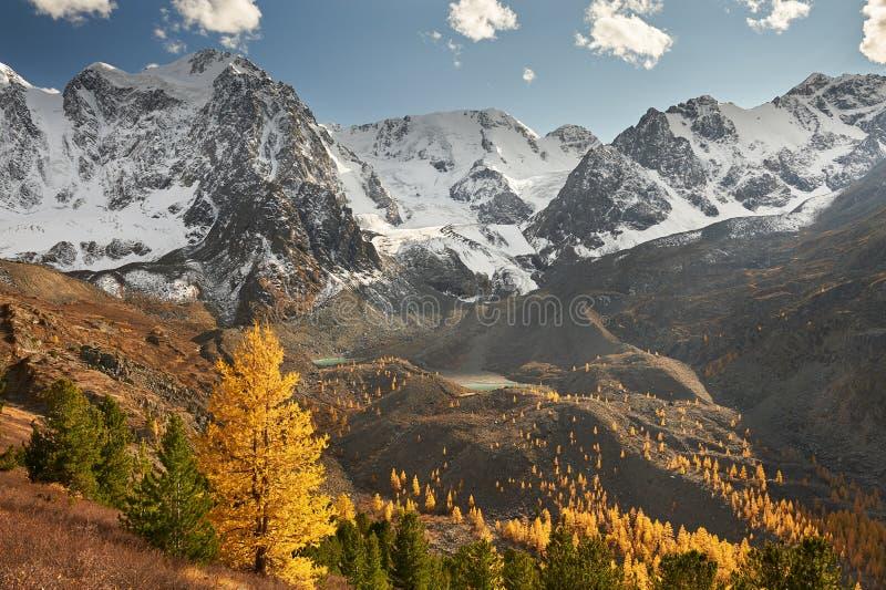 Горы Altai, Россия, Сибирь стоковые изображения rf