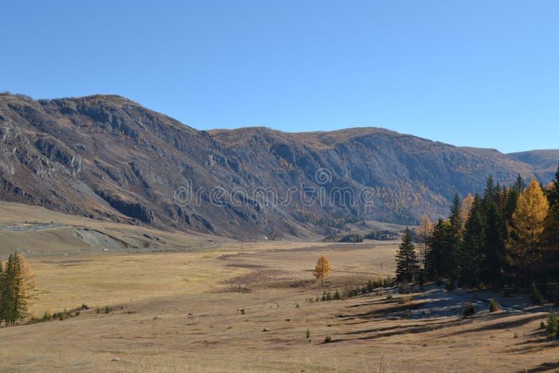 Горы Altai, утесы, небо стоковое изображение