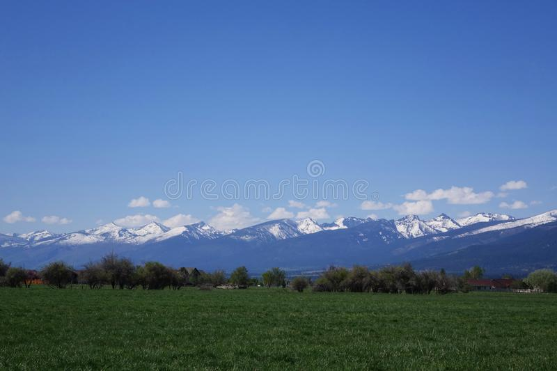Горы Bitterroot около Гамильтона, Монтаны стоковые фотографии rf