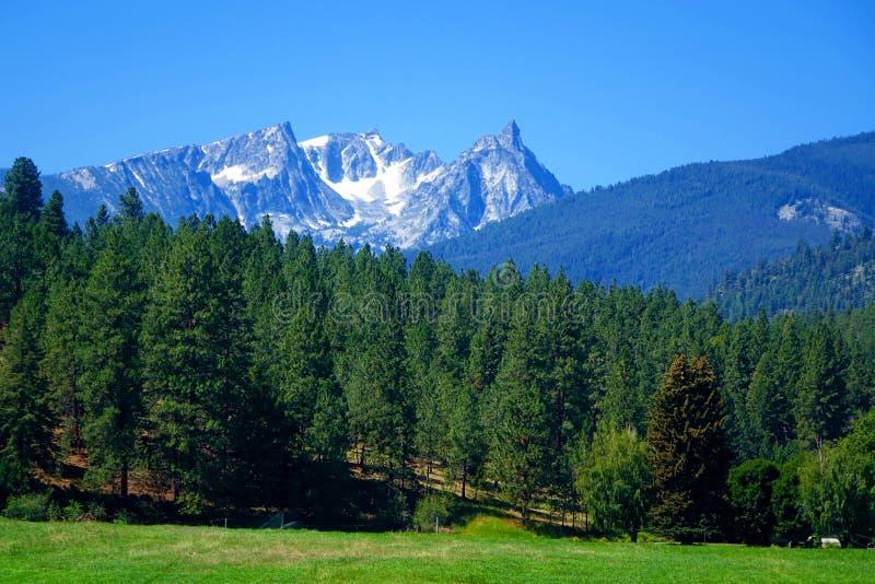 Горы Bitterroot около Darby, Монтаны стоковая фотография rf