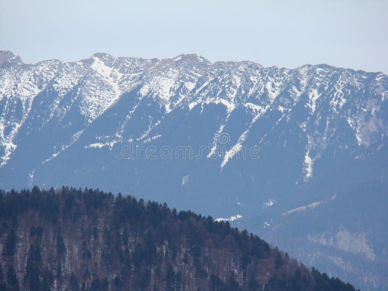Горы Bucegi - Румыния стоковая фотография rf
