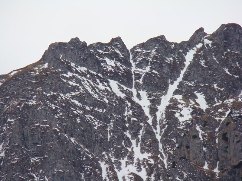 Горы Bucegi - Румыния стоковое изображение