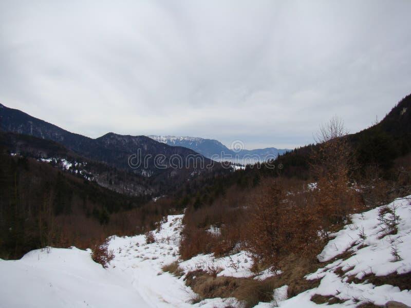 Горы Bucegi - Румыния стоковое фото