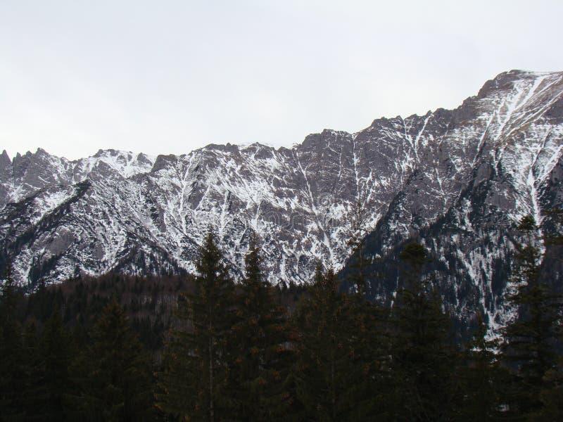 Горы Bucegi - Румыния стоковые изображения