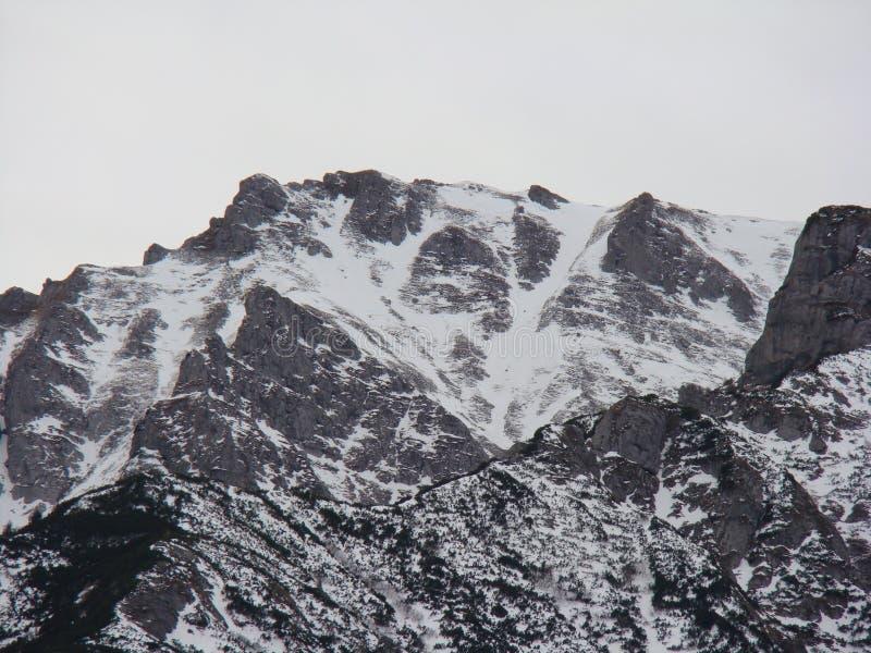 Горы Bucegi - Румыния стоковые изображения rf