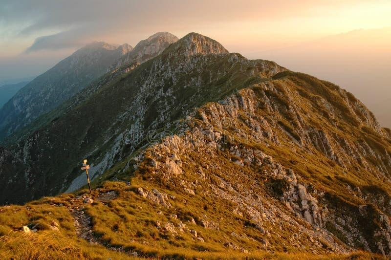 горы craiului над заходом солнца piatra стоковые изображения