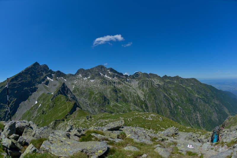 Горы Fagaras стоковые изображения