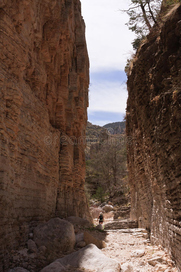 горы guadalupe стоковые изображения rf