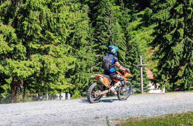 Горы Iezer - Румыния - 2019 Молодой велосипедист имея езду в лесе гор Iezer на перекрестном мотоцикле стоковая фотография rf