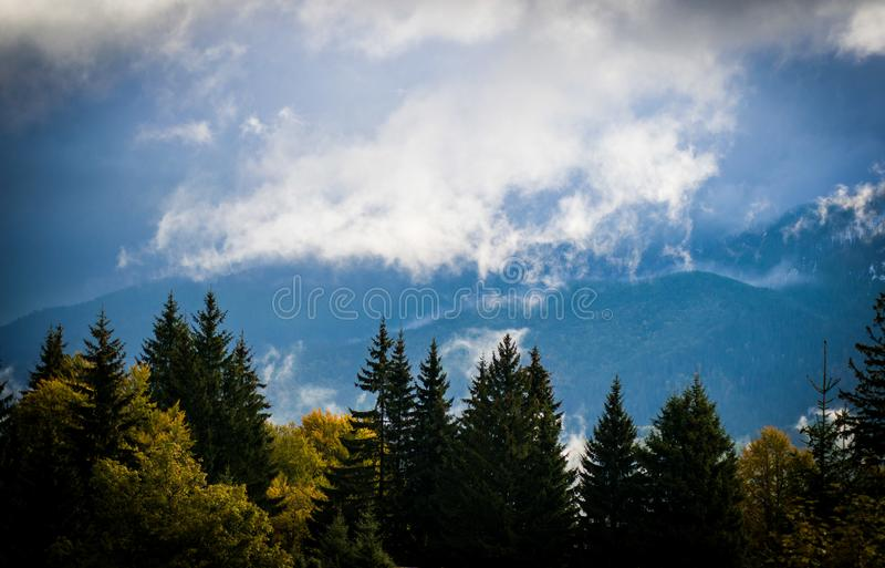 Горы Piatra Craiului, взгляд от Fundata, Румынии стоковые фотографии rf