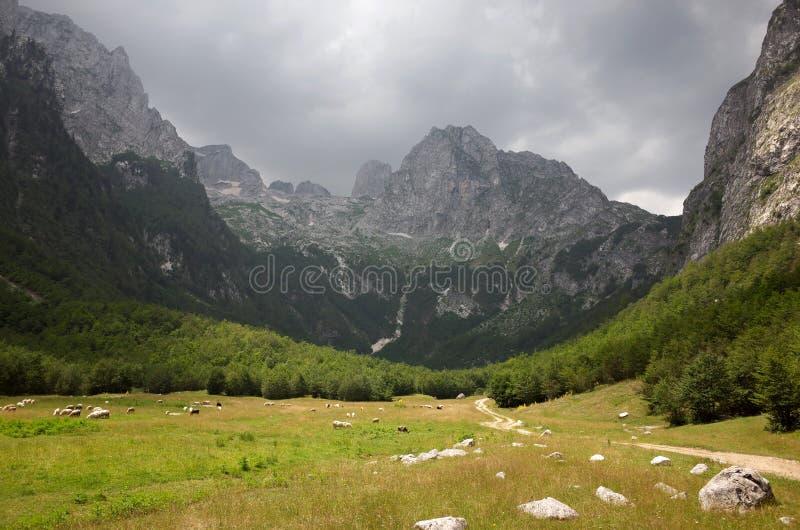 Горы Prokletije стоковые фотографии rf