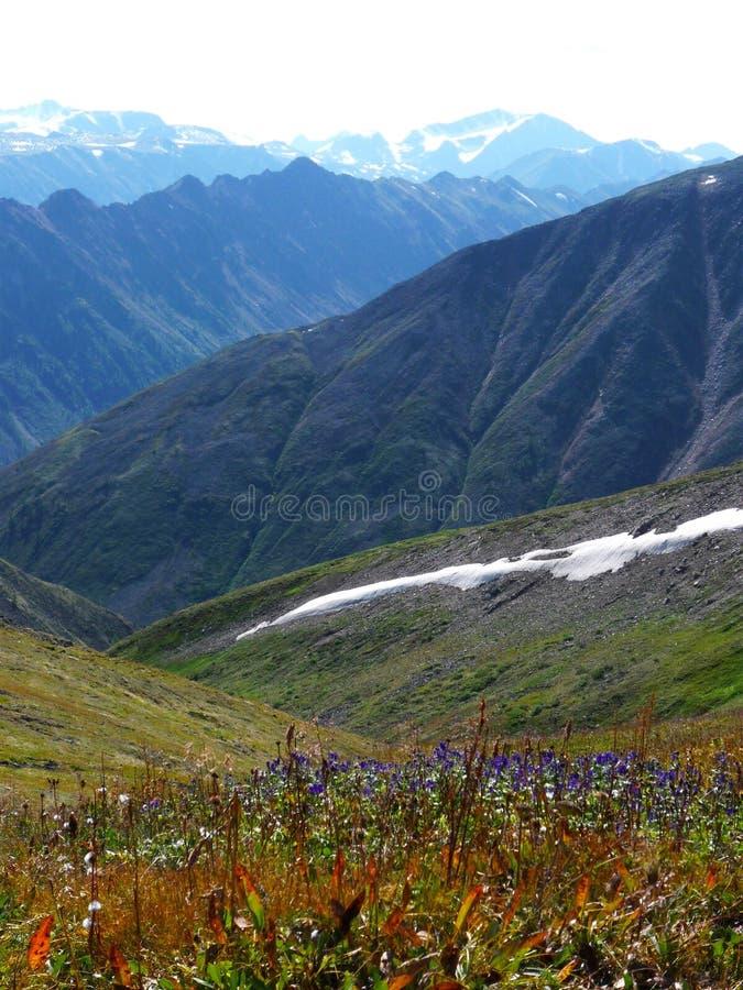 Горы Sayan в ivning стоковое изображение rf