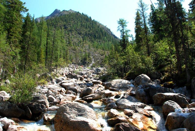 Горы, shumack, Lake Baikal, река, вода, отключение, спрус, лес, гора, Россия стоковое фото