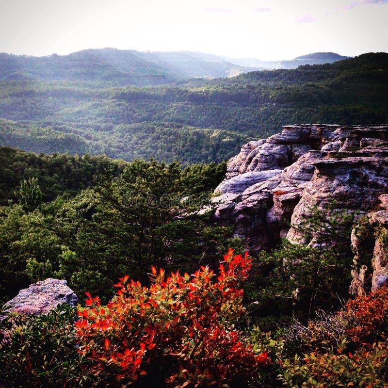 Горы Smokey стоковые изображения rf