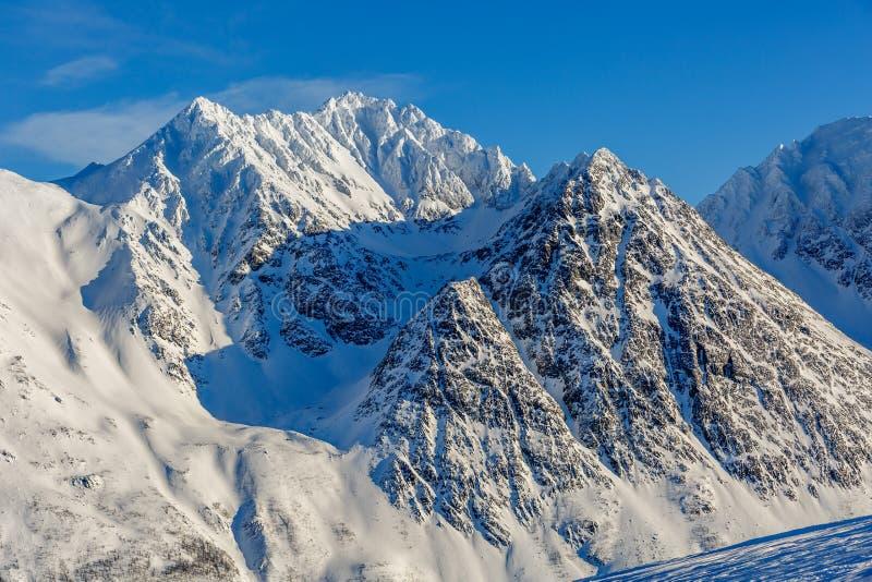 Горы Snowy в ледовитой Норвегии стоковая фотография rf