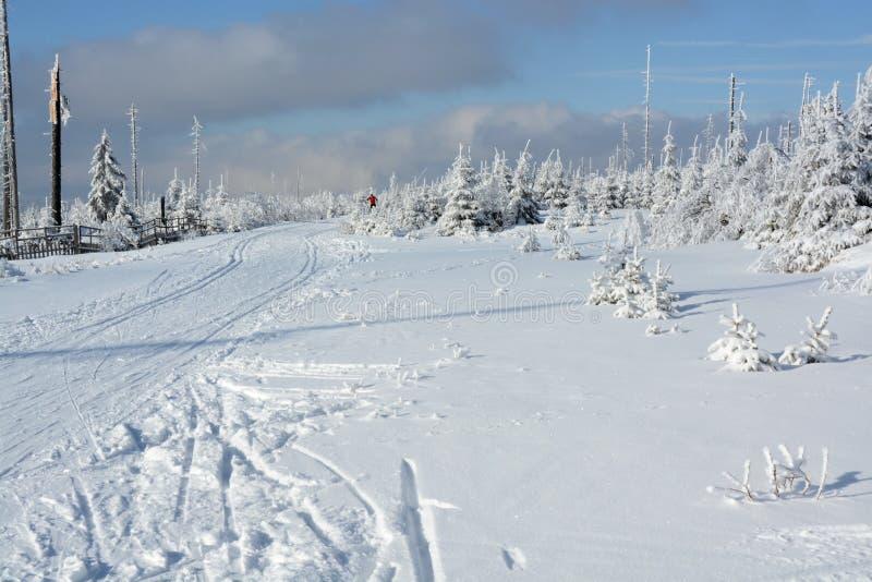 Горы Sumava, зима Черногории, южная Богемия стоковые изображения