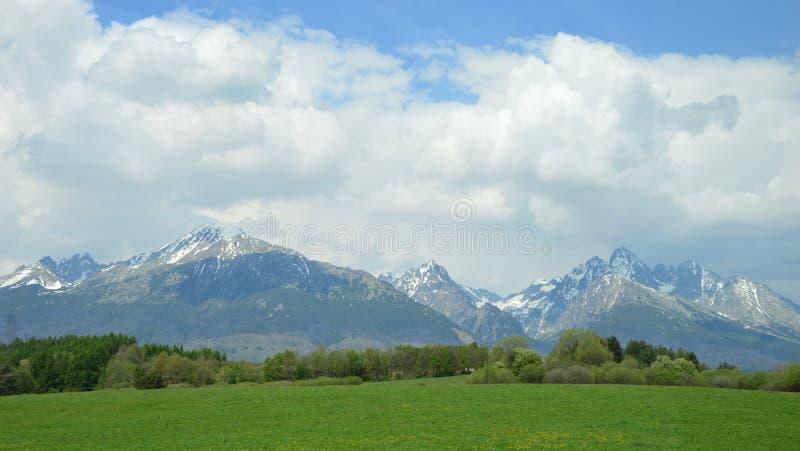 Download Горы Tatra стоковое фото. изображение насчитывающей пуща - 40575356