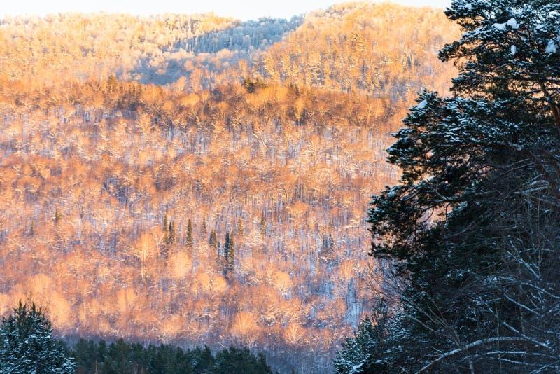 Горы Ural в выравниваясь свете стоковые изображения rf
