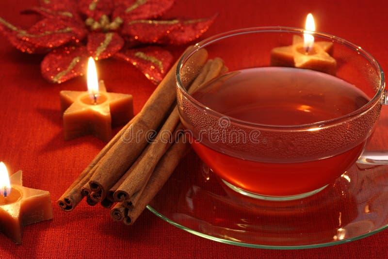 горячая зима чая стоковая фотография