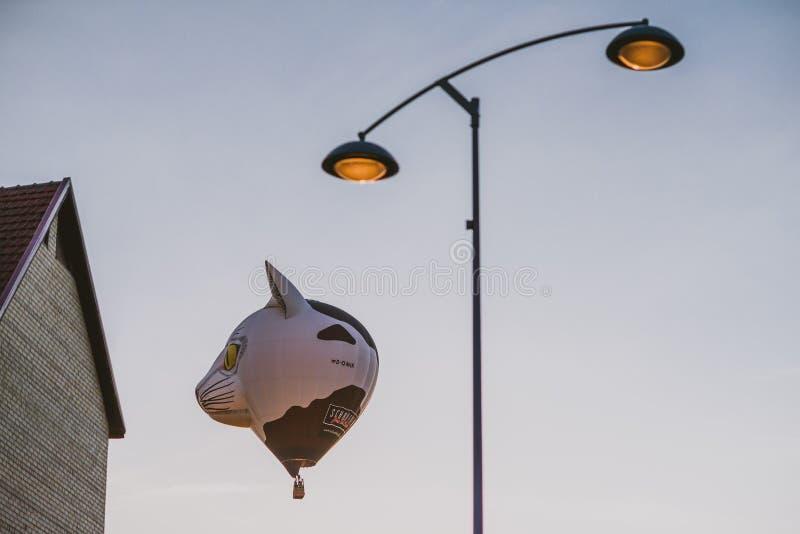 Горячие воздушные шары летая над городом Birstonas стоковые изображения rf